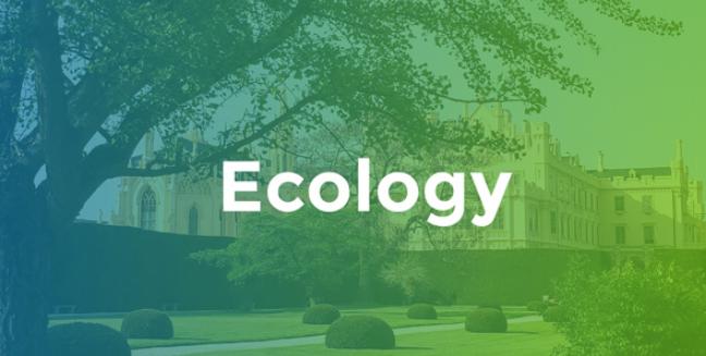 Vad är ekologi?