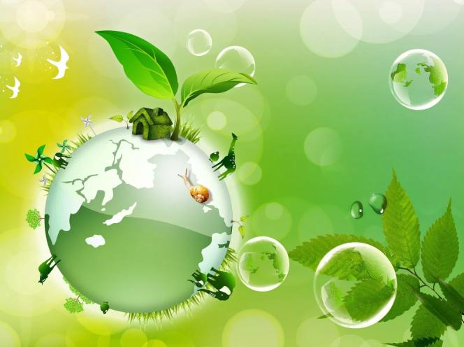 En hemsida om miljö och ekologi i Sverige